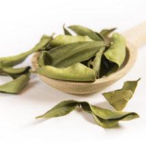 Kaffirlimetten Blätter